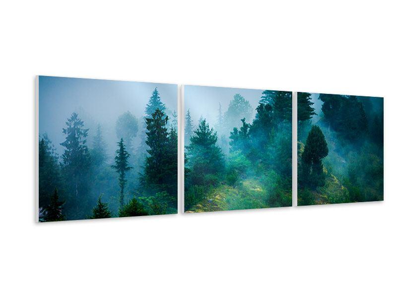 Panorama Hartschaumbild 3-teilig Geheimnisvoller Wald