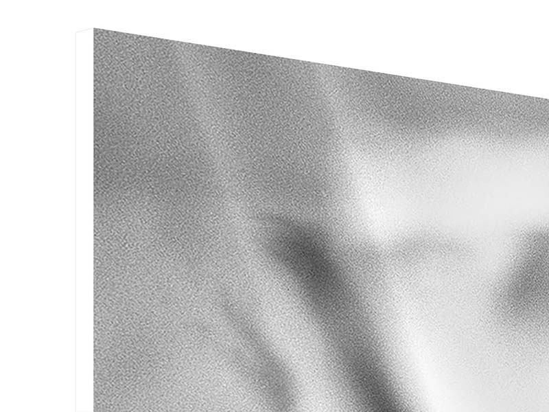 Panorama Hartschaumbild 3-teilig Makro Lilienblatt