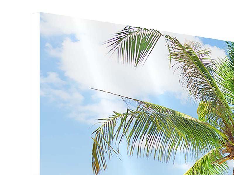 Panorama Hartschaumbild 3-teilig Die eigene Insel
