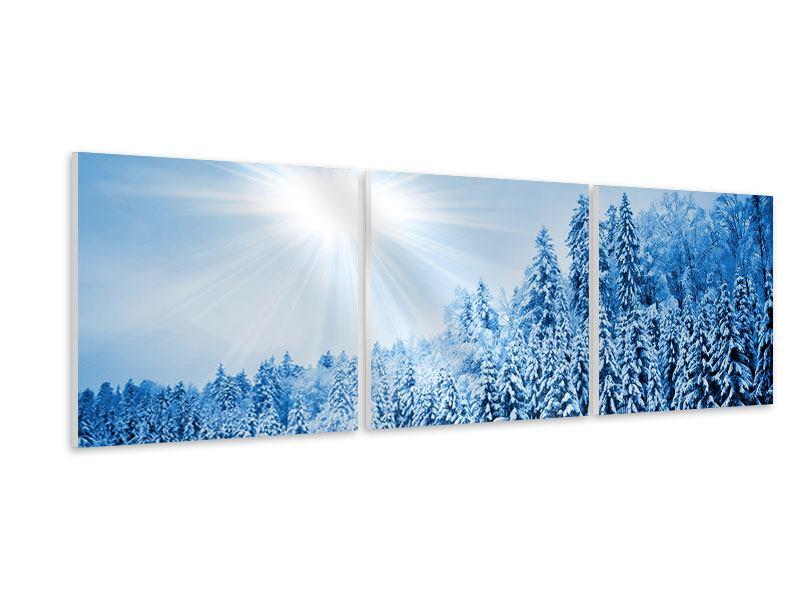 Panorama Hartschaumbild 3-teilig Wintermärchen