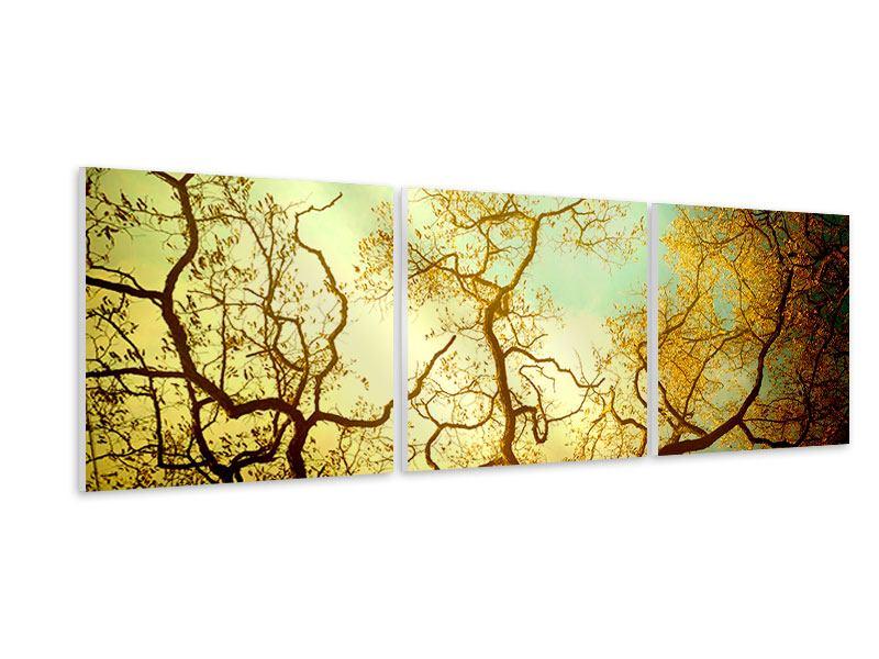 Panorama Hartschaumbild 3-teilig Bäume im Herbst
