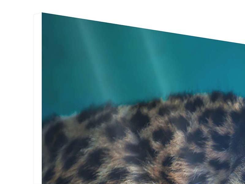 Panorama Hartschaumbild 3-teilig Leopard XL