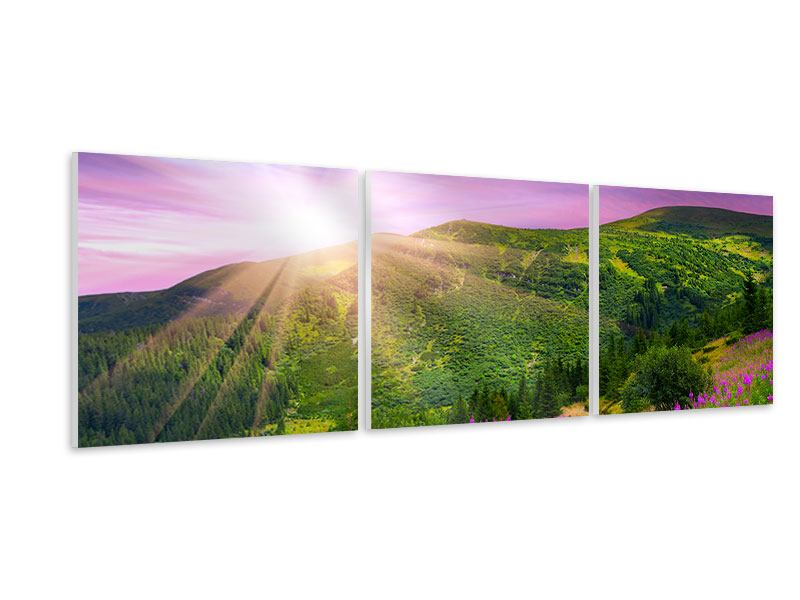 Panorama Hartschaumbild 3-teilig Eine Sommerlandschaft bei Sonnenaufgang
