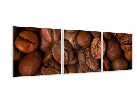 Panorama Hartschaumbild 3-teilig Close Up Kaffeebohnen