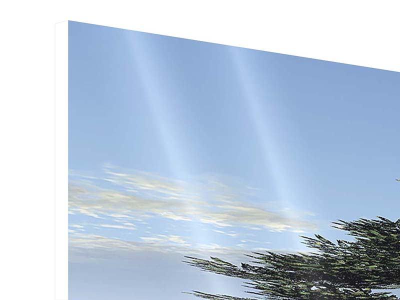Panorama Hartschaumbild 3-teilig Naturfaszination