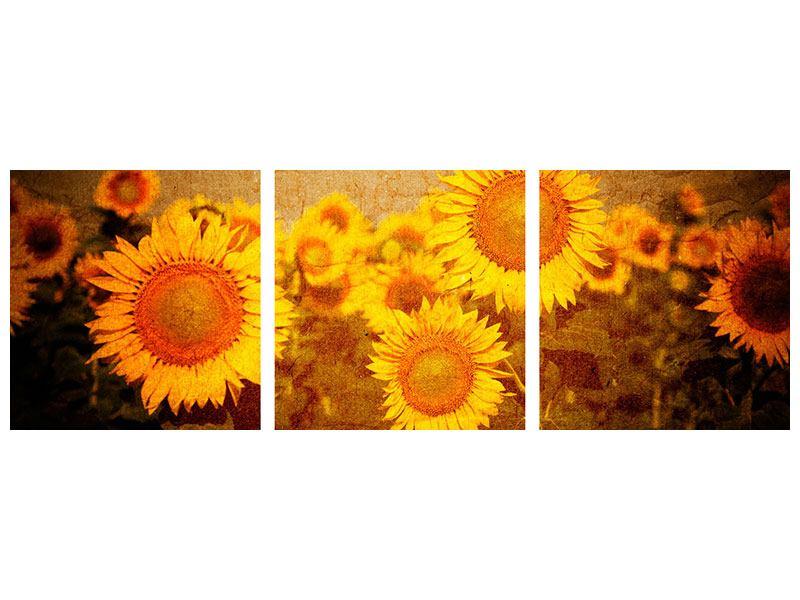 Panorama Hartschaumbild 3-teilig Retro-Sonnenblumen