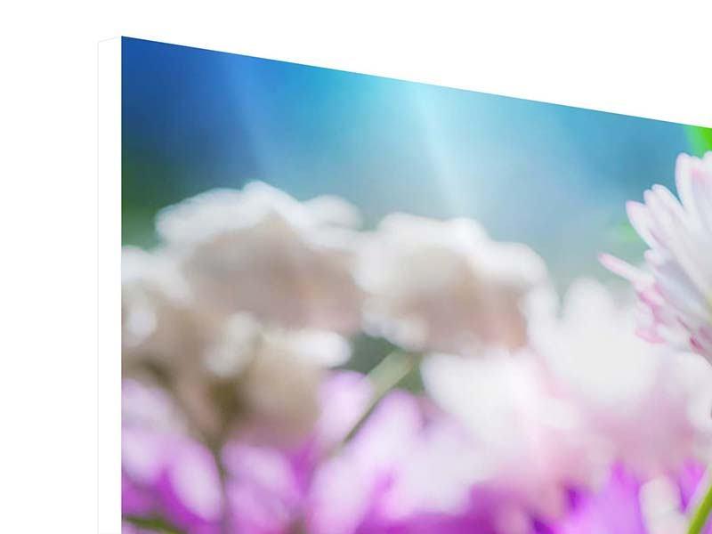 Panorama Hartschaumbild 3-teilig XXL Gartenblumen