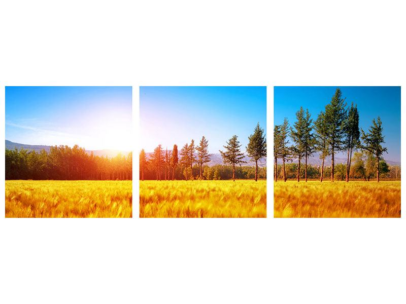 Panorama Hartschaumbild 3-teilig Der Herbst