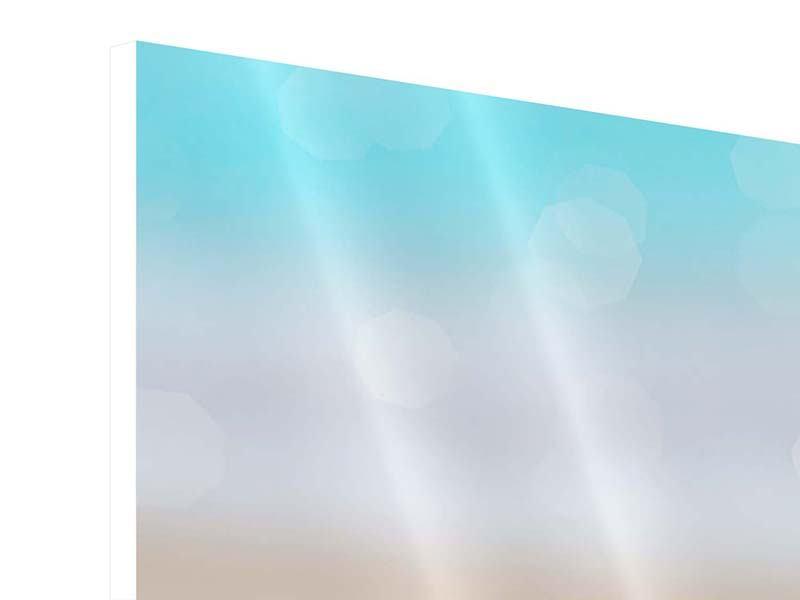Panorama Hartschaumbild 3-teilig Die Muschel am Strand