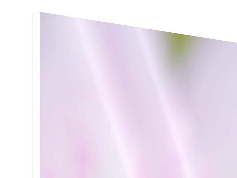 Panorama Hartschaumbild 3-teilig XXL-Lilie