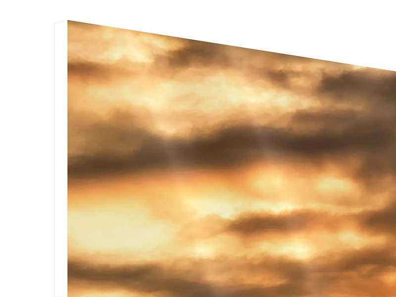 Panorama Hartschaumbild 3-teilig African Dreams
