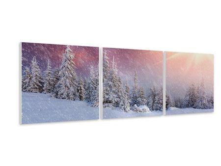 Panorama Hartschaumbild 3-teilig Mystischer Schneesturm
