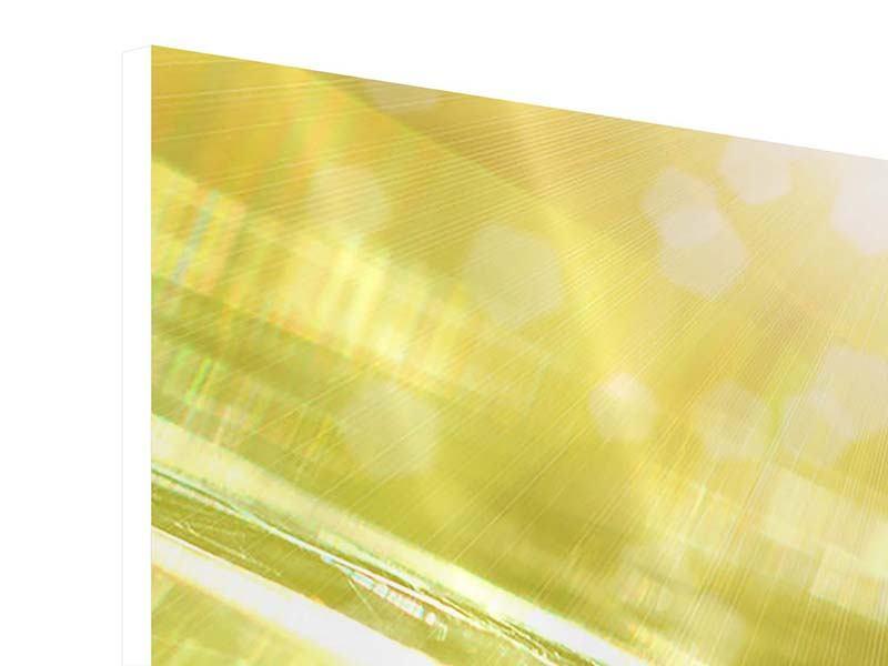Panorama Hartschaumbild 3-teilig Marienkäfer im Sonnenlicht