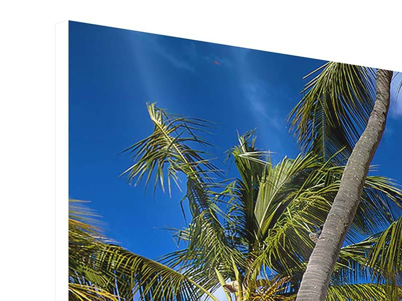 Panorama Hartschaumbild 3-teilig Mauritius