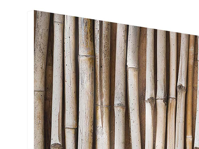 Panorama Hartschaumbild 3-teilig Getrocknete Bambusrohre
