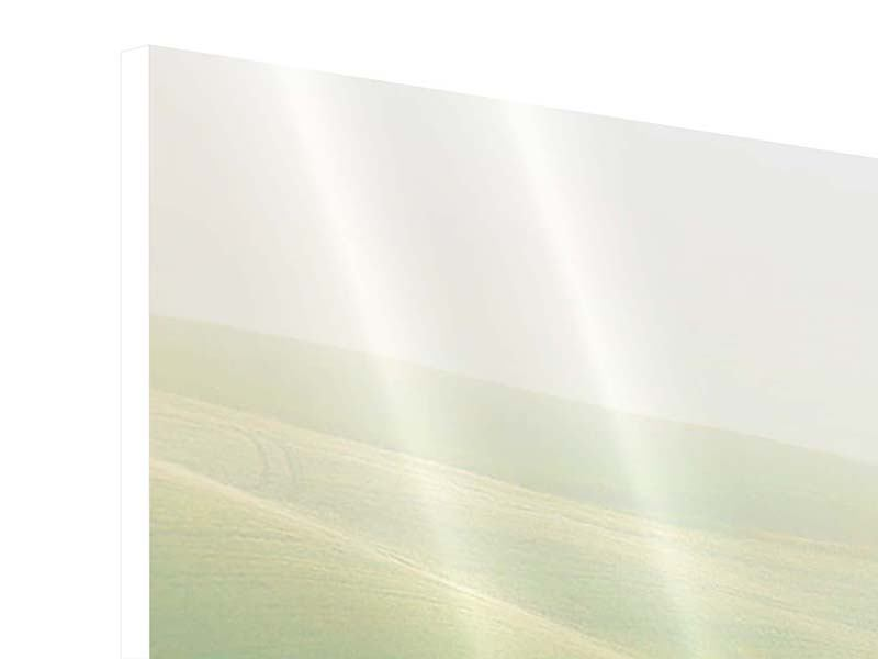 Panorama Hartschaumbild 3-teilig Toskana