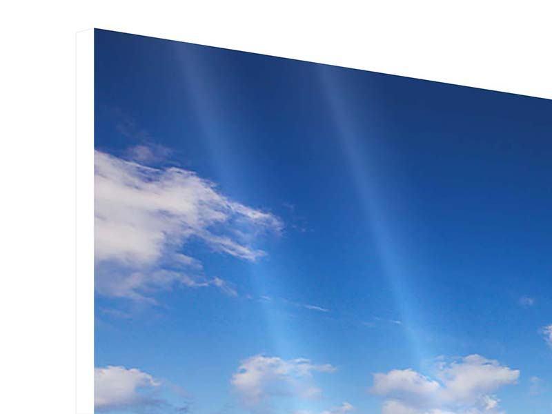 Panorama Hartschaumbild 3-teilig Die Gezeiten und das Meer