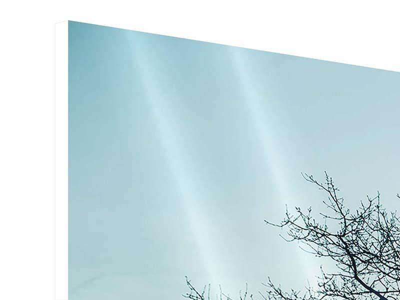 Panorama Hartschaumbild 3-teilig Der Zauberbaum