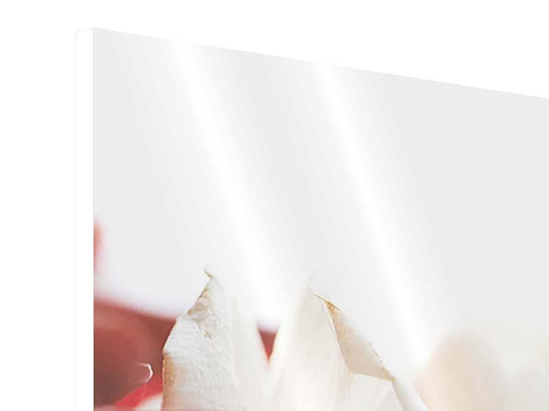 Panorama Hartschaumbild 3-teilig Herrliche Rosen