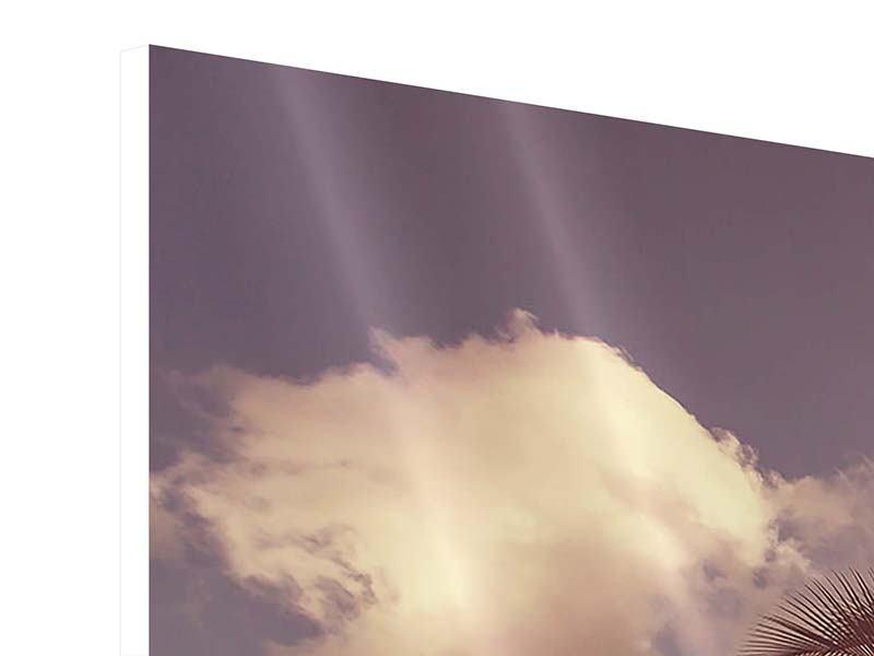 Panorama Hartschaumbild 3-teilig Die schiefe Palme