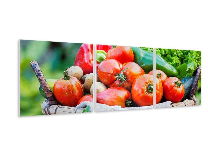 Panorama Hartschaumbild 3-teilig Gemüsekorb