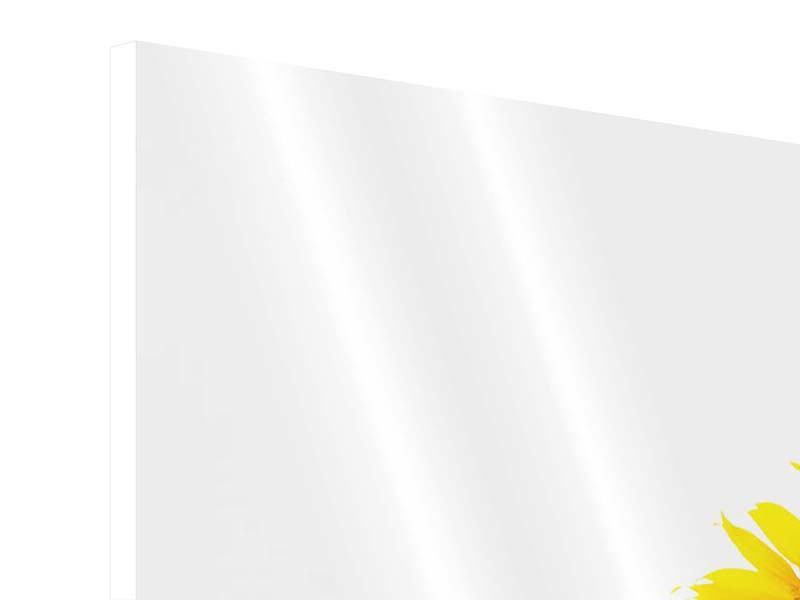 Panorama Hartschaumbild 3-teilig Das Sonnenblumenfeld
