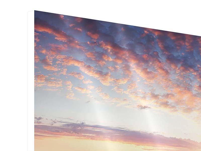 Panorama Hartschaumbild 3-teilig Ein Blumenfeld bei Sonnenaufgang