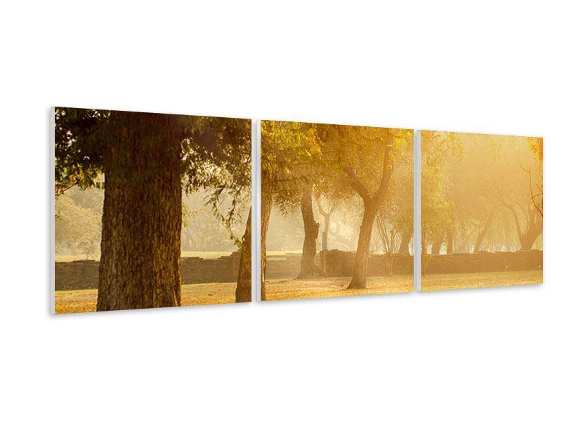 Panorama Hartschaumbild 3-teilig Romantik unter Bäumen