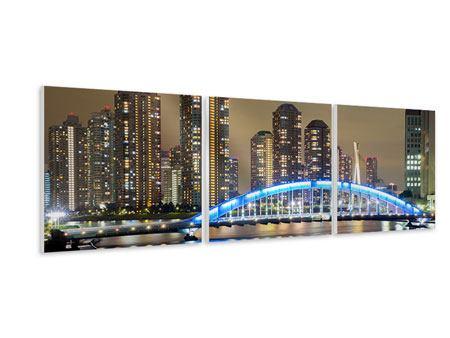 Panorama Hartschaumbild 3-teilig Skyline Tokio in der Nacht