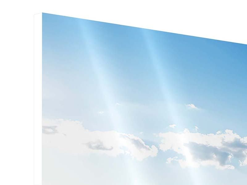 Panorama Hartschaumbild 3-teilig Die Möwen und das Meer