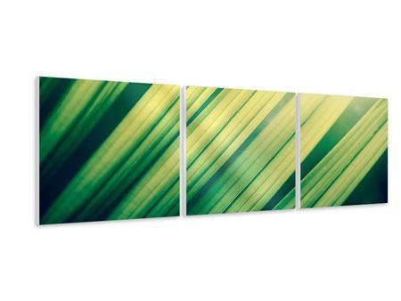 Panorama Hartschaumbild 3-teilig Beleuchtetes Palmblatt