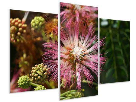 Hartschaumbild 3-teilig modern Die Regenbaumblüte