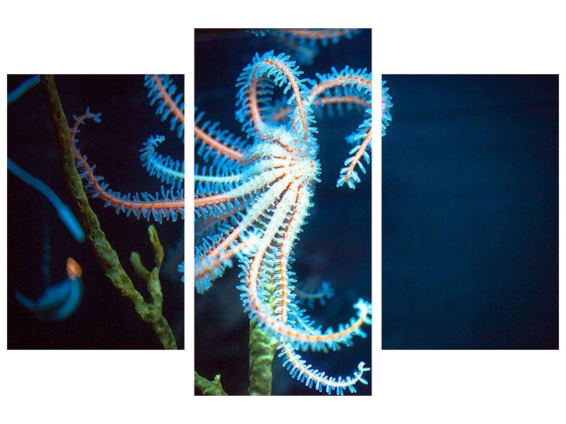 Hartschaumbild 3-teilig modern Aquarium