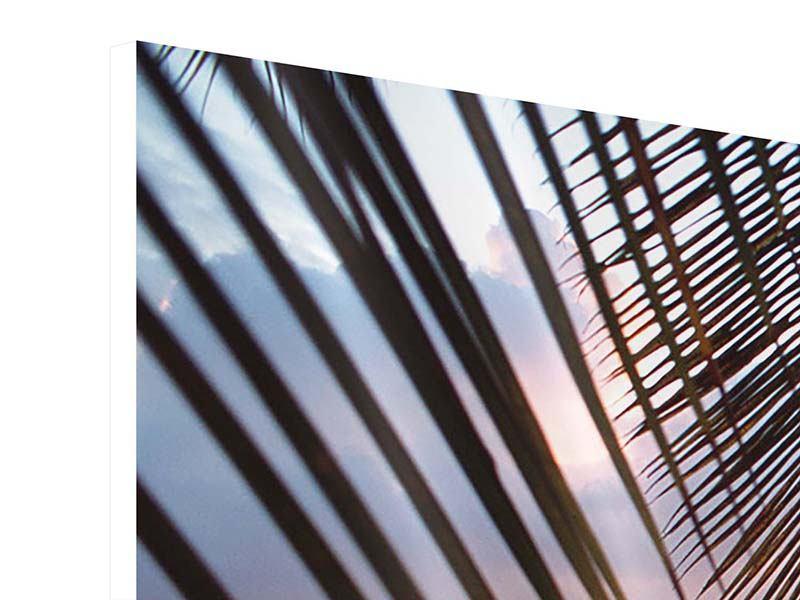 Hartschaumbild 3-teilig modern Unter Palmenblätter