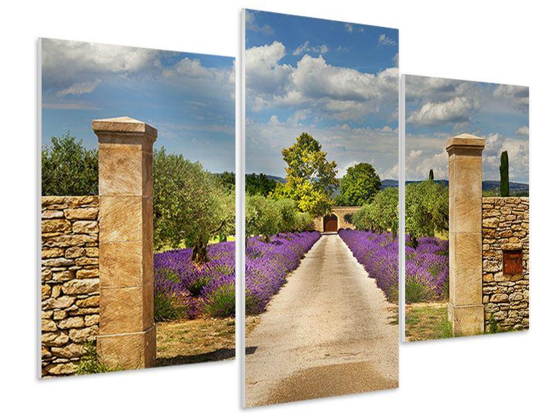 Hartschaumbild 3-teilig modern Lavendel-Garten