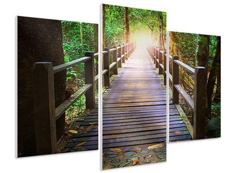 Hartschaumbild 3-teilig modern Die Brücke im Wald