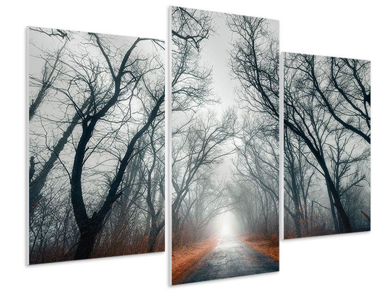 Hartschaumbild 3-teilig modern Mysteriöse Stimmung im Wald