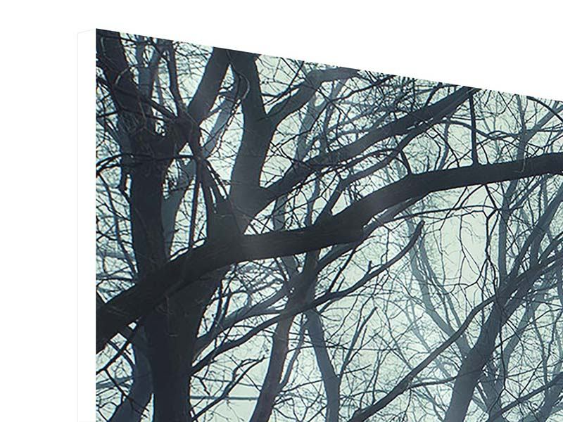 Hartschaumbild 3-teilig modern Nebelwald