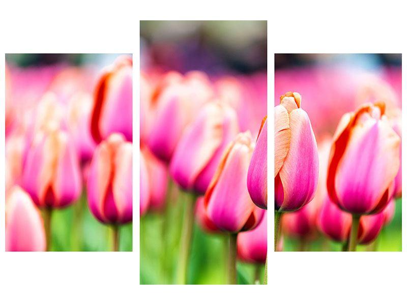 Hartschaumbild 3-teilig modern Pretty in Pink