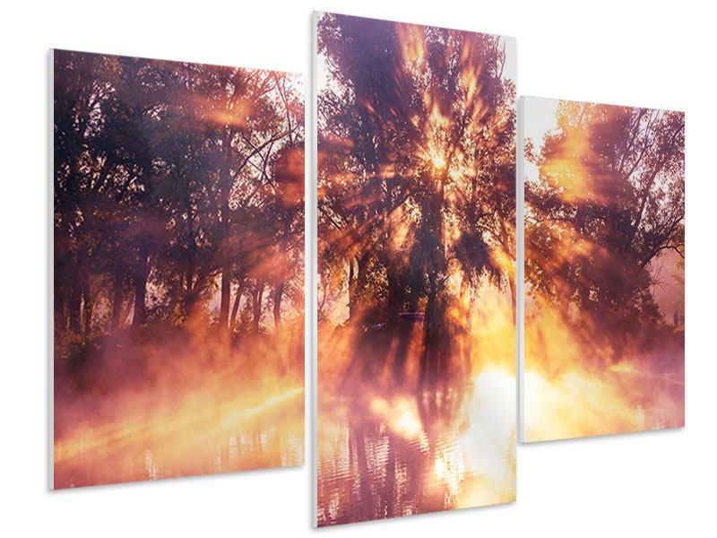 Hartschaumbild 3-teilig modern Die Waldspiegelung