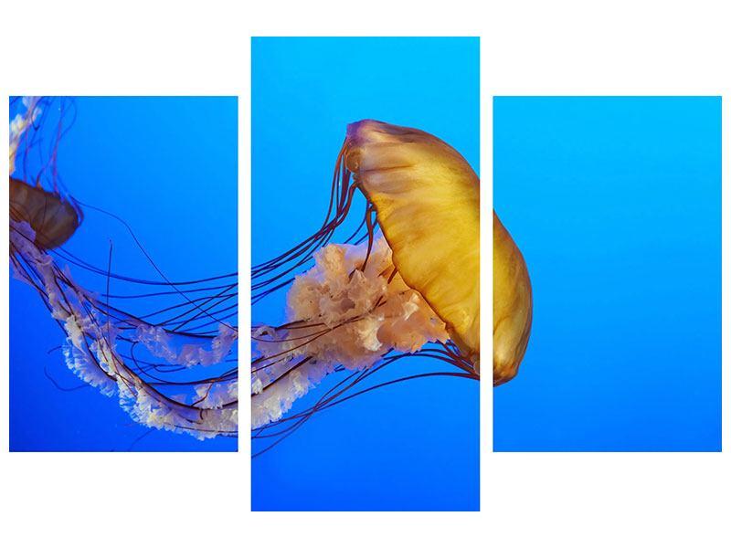 Hartschaumbild 3-teilig modern Medusa
