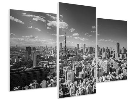 Hartschaumbild 3-teilig modern Tokio