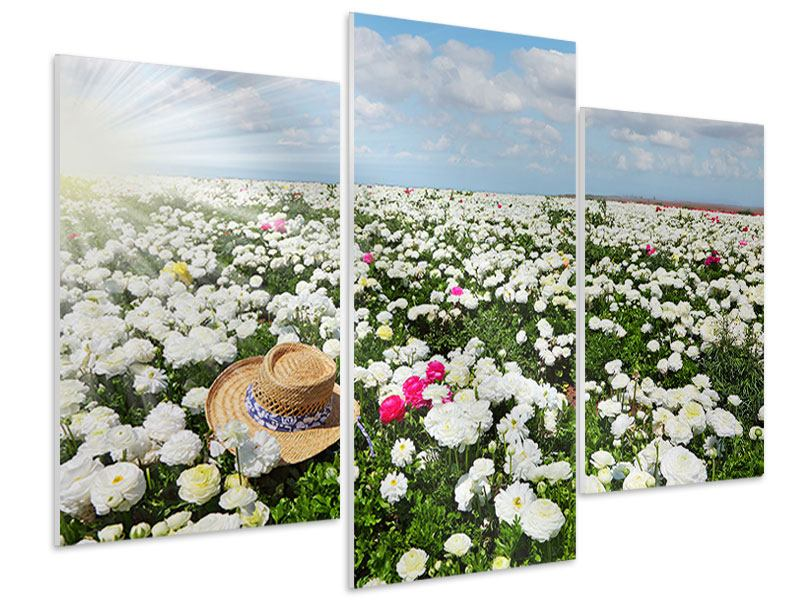 Hartschaumbild 3-teilig modern Die Frühlingsblumenwiese