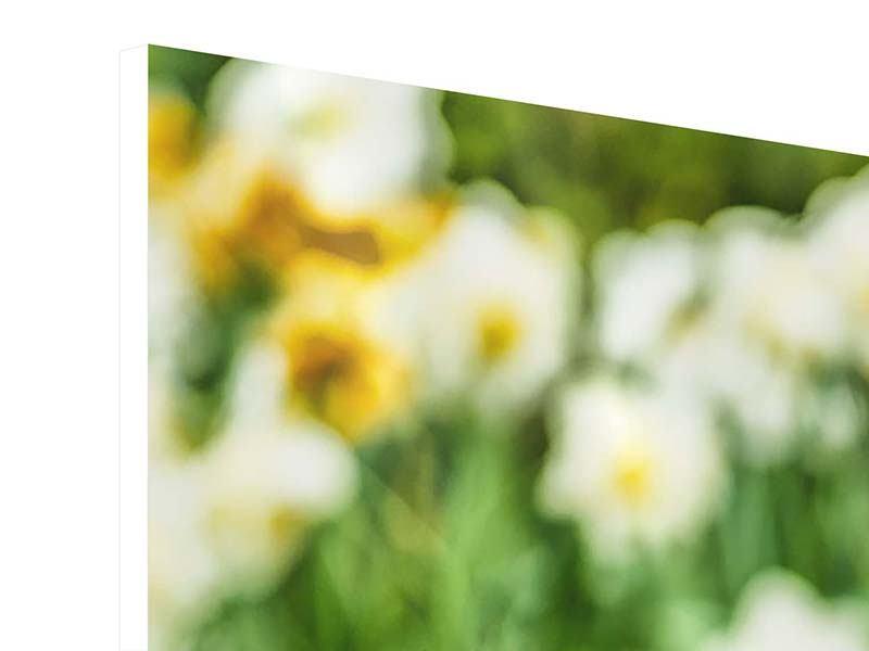 Hartschaumbild 3-teilig modern Ein Garten mit Tulpen