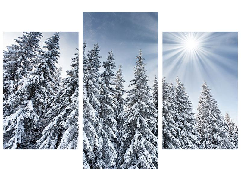 Hartschaumbild 3-teilig modern Wintertannen