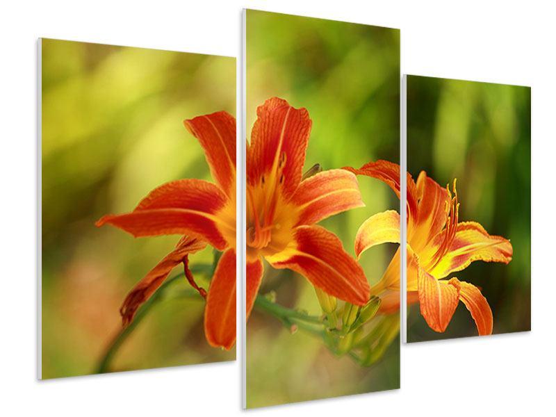 Hartschaumbild 3-teilig modern Natural Lilien
