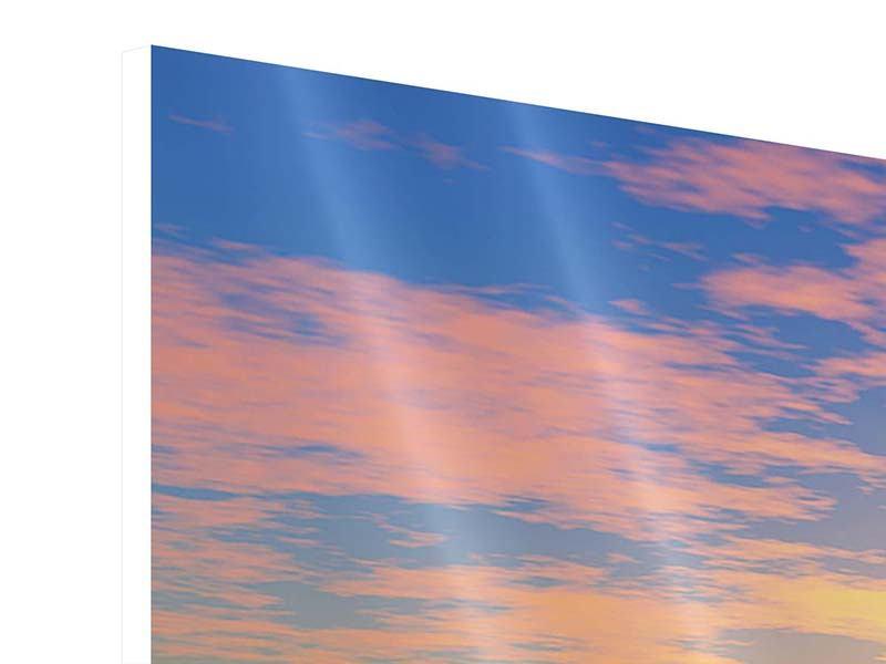 Hartschaumbild 3-teilig modern Blumenpanorama bei Sonnenuntergang