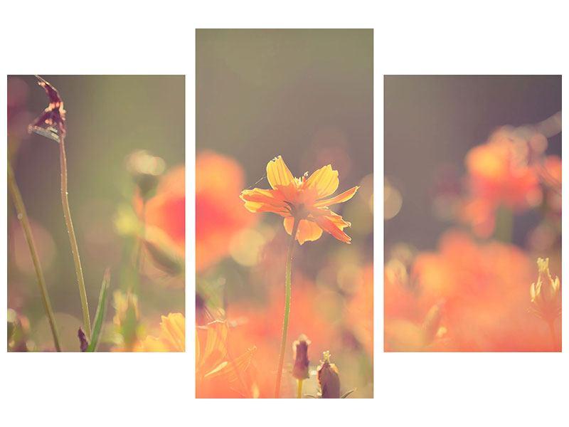 Hartschaumbild 3-teilig modern Blütenpracht