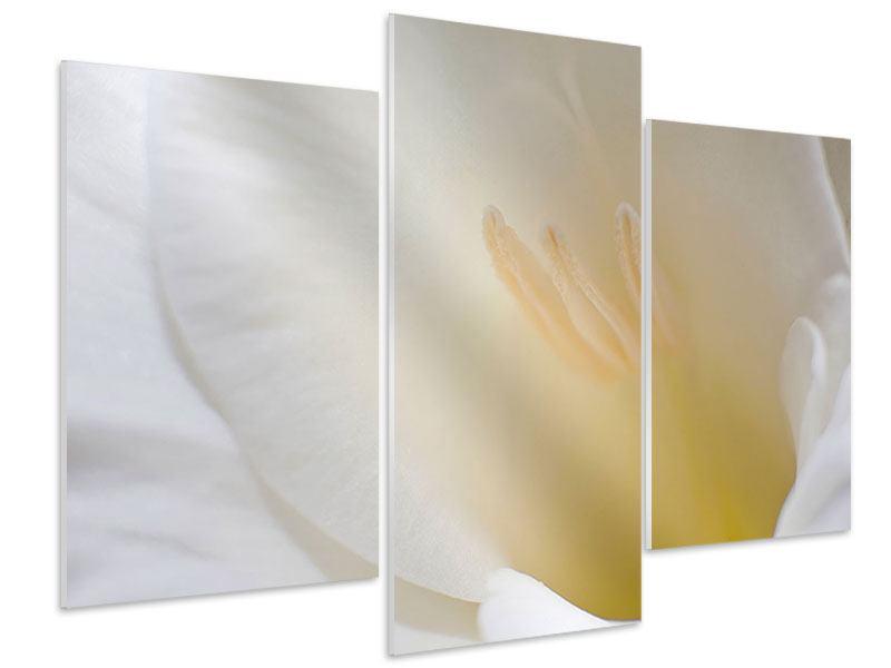 Hartschaumbild 3-teilig modern In einer Blüte