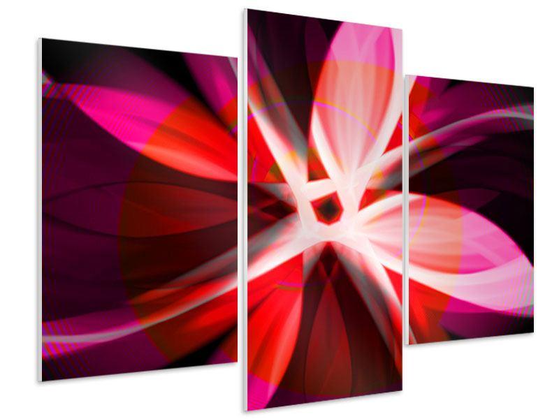 Hartschaumbild 3-teilig modern Abstrakt Flower Power